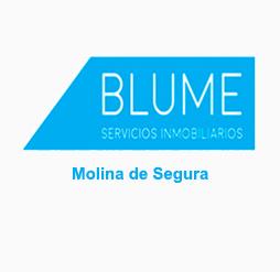BLUME MOLINA